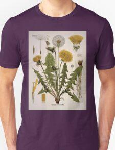 Köhler's Medizinal Pflanzen in naturgetreuen Abbildungen mit kurz erläuterndem Texte  Atlas zur Pharmacopoea 1883 1914 V1 005 Taraxacum Officinale Web Dandelion T-Shirt