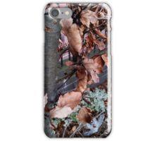 Season's End iPhone Case/Skin