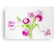Tulip extravaganza Canvas Print