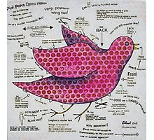 The Pink Polka Dotted Pigeon Photographic Print