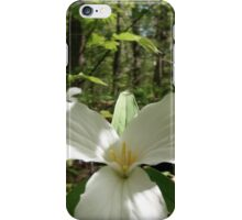 Trilliums Point the Way iPhone Case/Skin