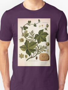 Köhler's Medizinal Pflanzen in naturgetreuen Abbildungen mit kurz erläuterndem Texte  Atlas zur Pharmacopoea 1883 1914 V2 058 Jateorrhiza calumba T-Shirt