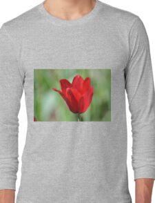 Backlit Red Tulip Long Sleeve T-Shirt