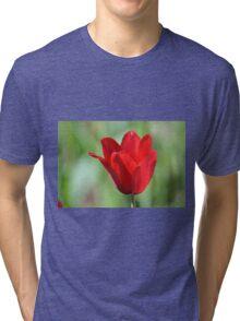 Backlit Red Tulip Tri-blend T-Shirt