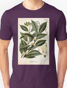 Köhler's Medizinal Pflanzen in naturgetreuen Abbildungen mit kurz erläuterndem Texte  Atlas zur Pharmacopoea 1883 1914 V3 015 Willoughbya Firma T-Shirt