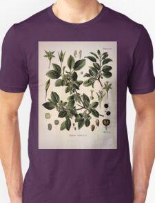 Köhler's Medizinal Pflanzen in naturgetreuen Abbildungen mit kurz erläuterndem Texte  Atlas zur Pharmacopoea 1883 1914 V1 066 Rhamnus Cathartica T-Shirt