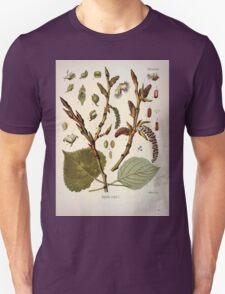 Köhler's Medizinal Pflanzen in naturgetreuen Abbildungen mit kurz erläuterndem Texte  Atlas zur Pharmacopoea 1883 1914 V1 057 Populus Nigra T-Shirt