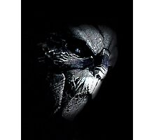 Garrus - Mass Effect Photographic Print