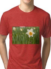Lone Daffodil in spring Tri-blend T-Shirt