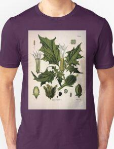 Köhler's Medizinal Pflanzen in naturgetreuen Abbildungen mit kurz erläuterndem Texte  Atlas zur Pharmacopoea 1883 1914 V1 024 Datura Stramonium T-Shirt