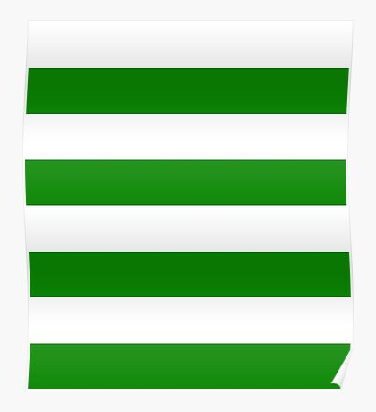 Green and White Stripes Poster