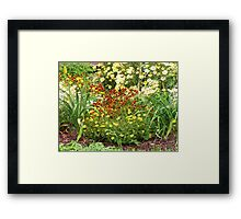 Golden Garden Framed Print