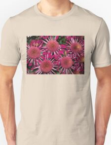 Like Suns, Like Stars or Just Exotic Mums Unisex T-Shirt