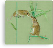 Field Mice Canvas Print