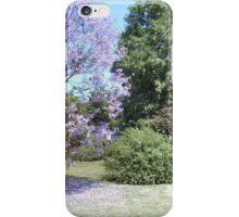 Jacaranda amidst the trees, in Spring iPhone Case/Skin