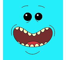 I Am Mr. Meeseeks Photographic Print