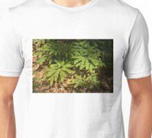 Sunlit Forest Floor Treasures Unisex T-Shirt
