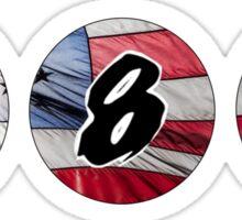 Blink America Sticker