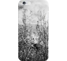 Lair O' the Aspens iPhone Case/Skin