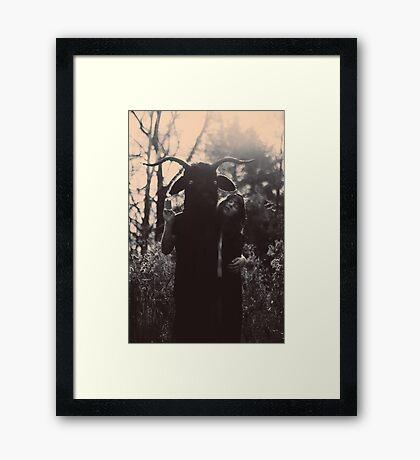Aegocerus Framed Print