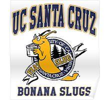 Banana Slugs Poster