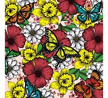 Flowers and Butterflies Photographic Print
