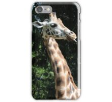 Silly giraffe  iPhone Case/Skin