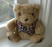 Little Ted by Maggie Hegarty