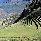 Andean Sceneries by Alessandro Pinto