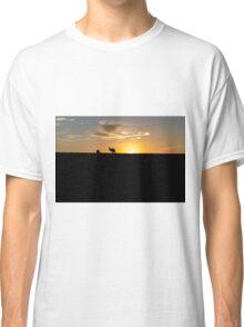 Silhouette of Kangaroos at  Sunset Classic T-Shirt