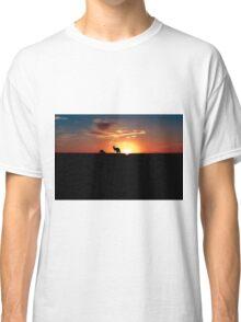 Kangaroos at Sunset Classic T-Shirt