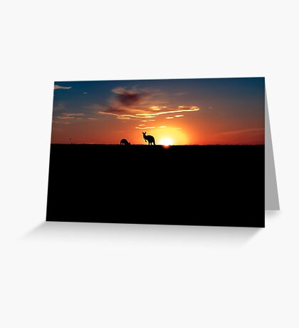 Kangaroos at Sunset Greeting Card