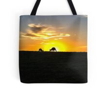 Silhouette of Kangaroos at  Sunset Tote Bag