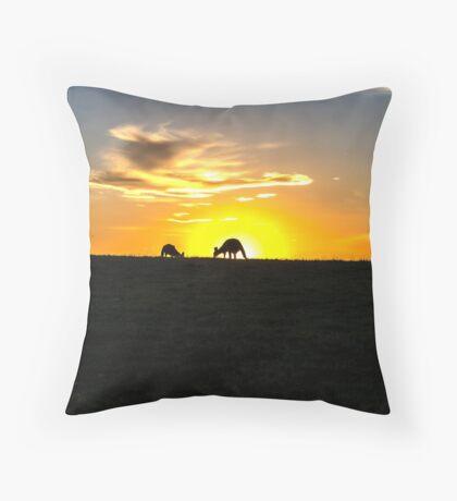 Silhouette of Kangaroos at  Sunset Throw Pillow