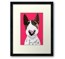 Boyka Bull Terrier  Framed Print