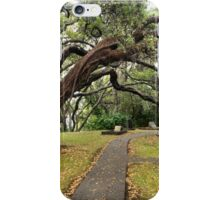 Autumn scenery at historical Tauranga Mission Cemetery iPhone Case/Skin