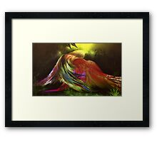 Hug Of Birds Framed Print