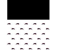 Psycho Pig Photographic Print