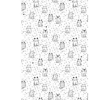 Little cats Photographic Print
