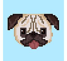 Pixel Pug (Blue) Photographic Print