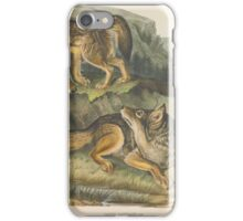 John James Audubon - Canis latrans, Say. Prairie Wolf. Males. 1-3  1845 iPhone Case/Skin