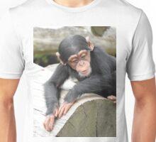 Baby Chimpanzee Unisex T-Shirt
