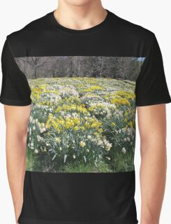 More and More Daffodils Graphic T-Shirt