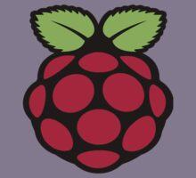 raspberry logo Kids Tee