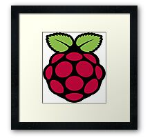 raspberry logo Framed Print