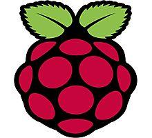 raspberry logo Photographic Print