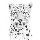 Lovely leopard by soltib