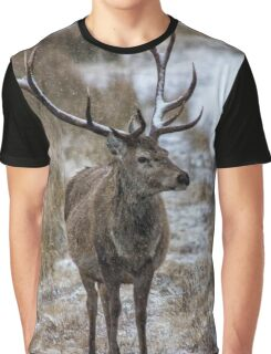 Twelve Pointed Stag in the Snow Graphic T-Shirt