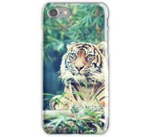 tiger... iPhone Case/Skin