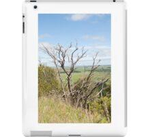 Through the branches iPad Case/Skin